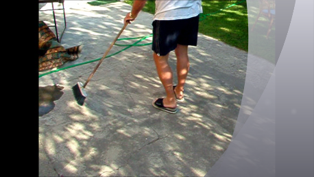 pulire il cortile