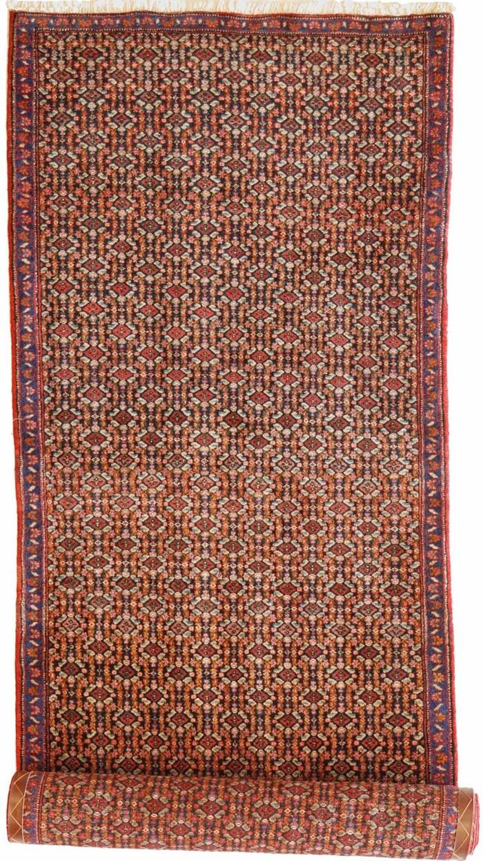 Tappeto persiano Bidjar